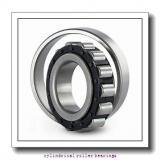 7.48 Inch | 190 Millimeter x 15.748 Inch | 400 Millimeter x 5.197 Inch | 132 Millimeter  SKF NU 2338 ECML/C3  Cylindrical Roller Bearings