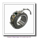 19.05 mm x 47 mm x 34,13 mm  TIMKEN 1012KLL  Insert Bearings Cylindrical OD